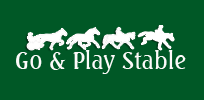 Go and Play Stable, Douro-Dummer,ON Vehicle Donation Quotation Form