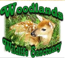 Woodlands Wildlife Sanctuary, Minden,ON Vehicle Donation Quotation Form